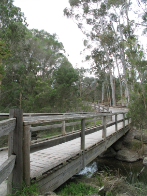 Bridge Blackburn Lake Sanctuary
